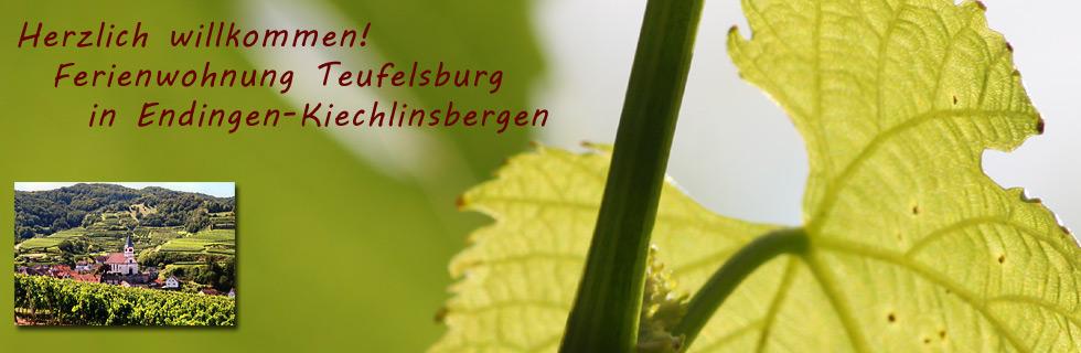 Ferienwohnung Teufelsburg - Familie Landerer - Endingen-Kiechlinsbergen